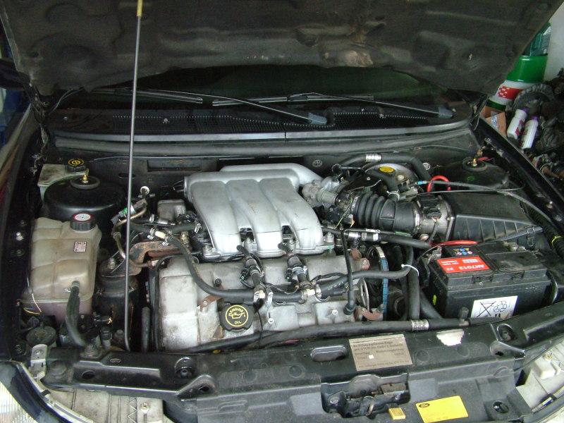 Das Benzin 92 oder 93